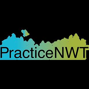 PraticeNWT.png