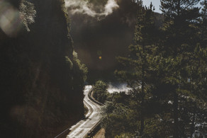 Road-Whakamaru-(1-of-1).jpg