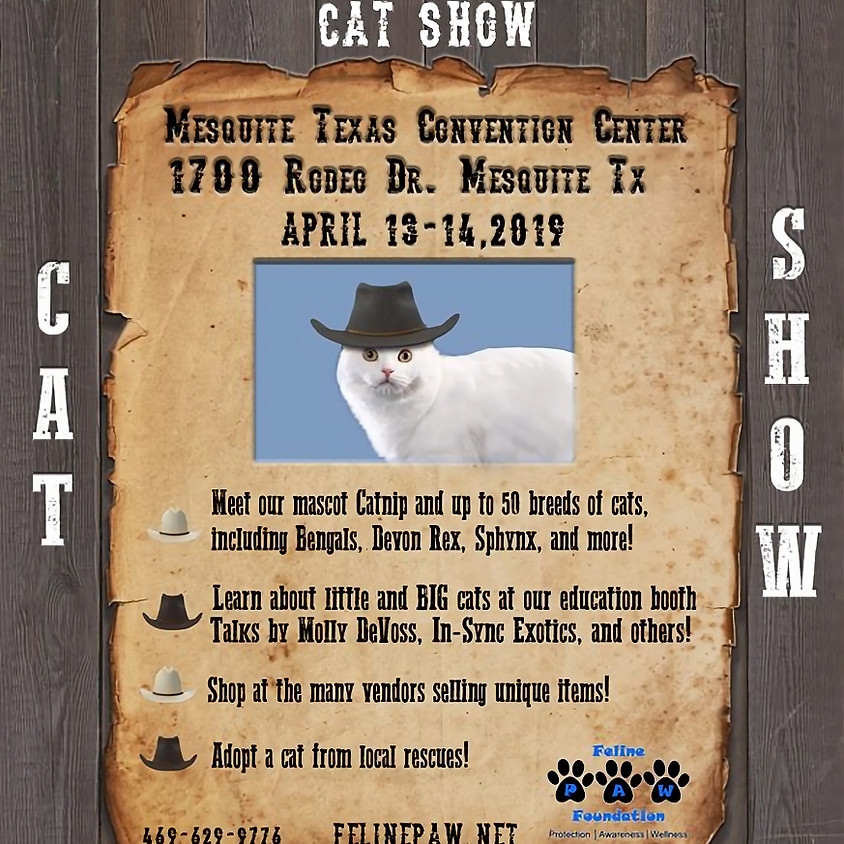 Kittens, Cats, and Cowboy Hats CAT SHOW !