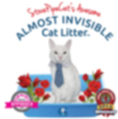 Almost-Invisible-CatLitter-Logo-StovePip