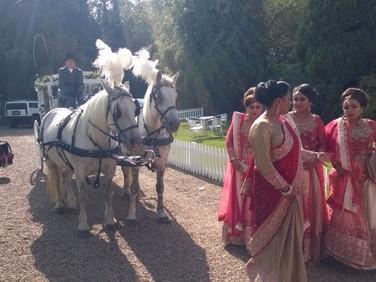 White Horse Farm Carriages