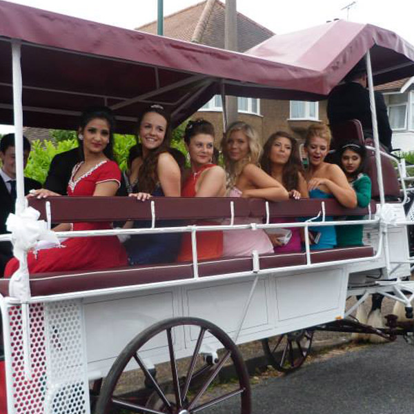 bridesmaid carriage