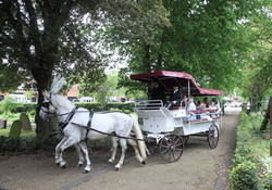 White Group Carriage