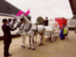 About White Horse Farm Carriages