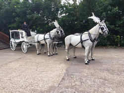 White Hearse Carriage