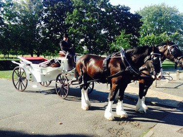 White Horse Farm Carriages