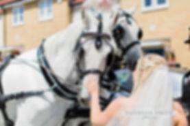 White Horse Farm Wedding Carraiges