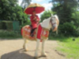 White Horse Farm Asian Wedding Horse
