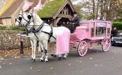Pink Hearse Carriage