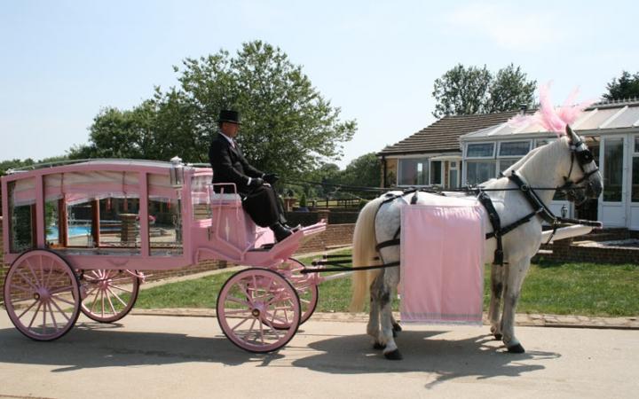 Hearse Pink