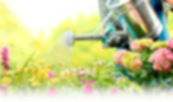 Услуги садовника в Волгограде (Волжском)