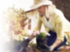 1. Услуги садовника в Волгограде (Волжск