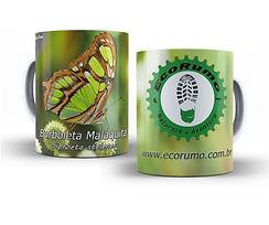 Borboleta malaquita.jpg