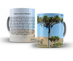 Araucaria.jpg
