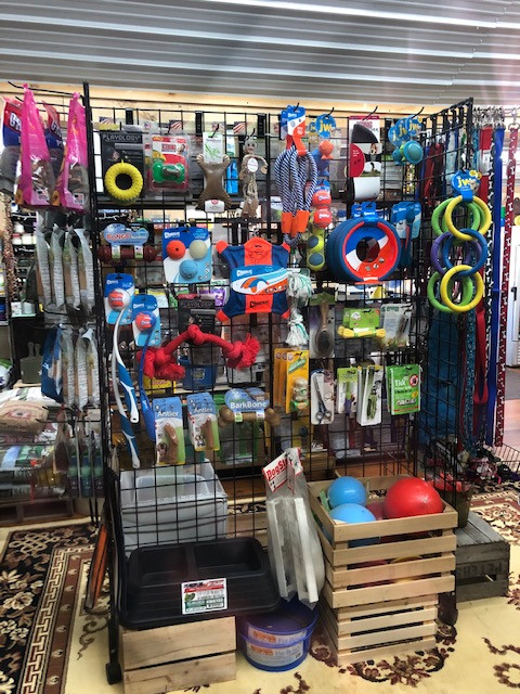 Some of Our Dog Toy Selection