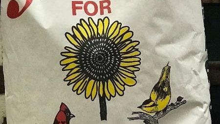 Thorn Farms Black Oil Sunflower Seeds