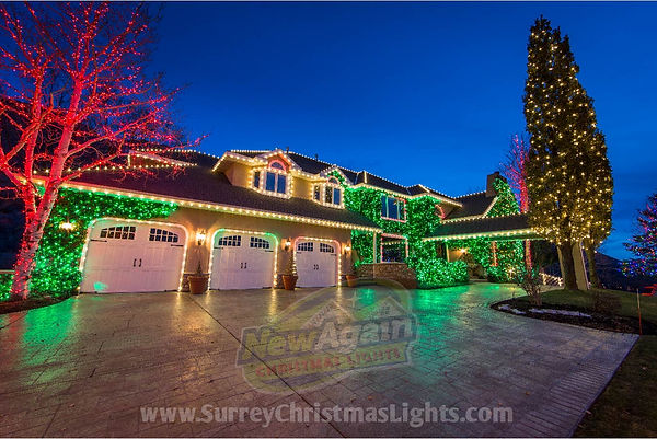 Surrey Christmas Lights professional Installation