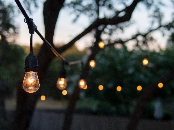Led-Light-bulbs.jpg