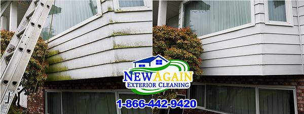 before and after of aluminum siding wash