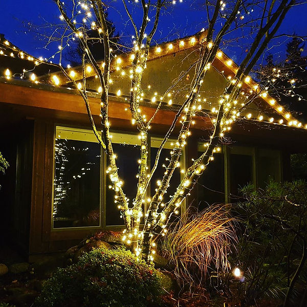 Surrey Christmas ligts tree wrap and roof line
