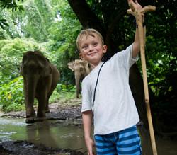 Walking with Elephants in Laos
