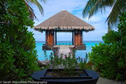 Yoga classes in tropical paradise