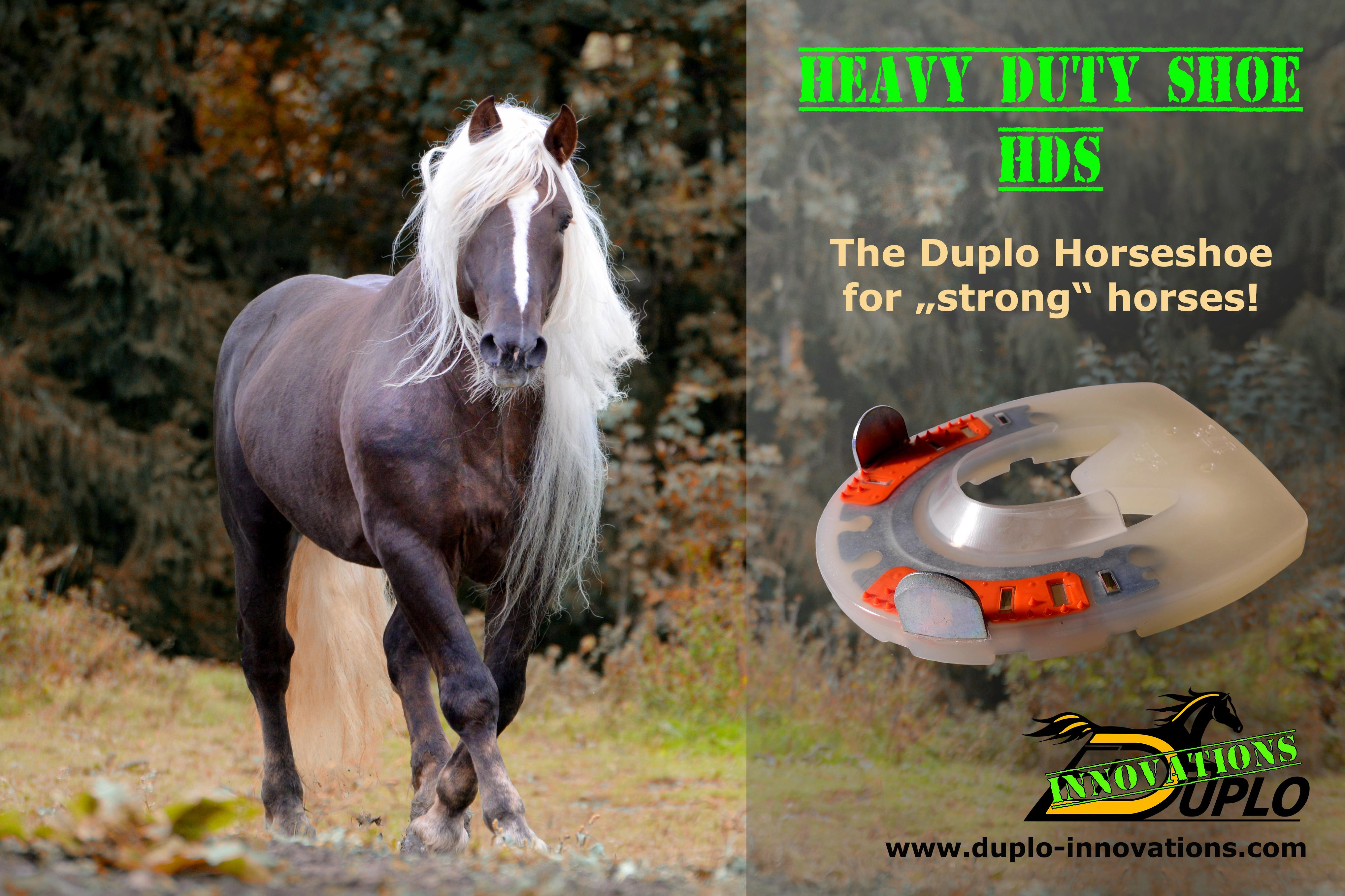 Heavy Duty Shoe
