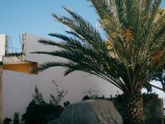 Tenerife21-39.jpg