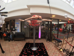 Hire contortionist martini glass act