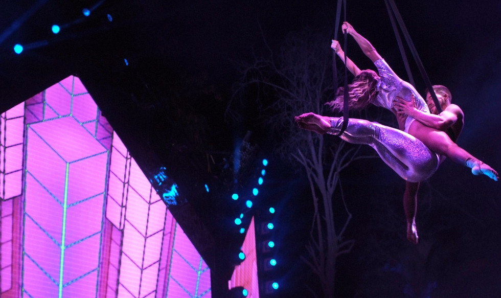 Best Aerial Show for Hire UK