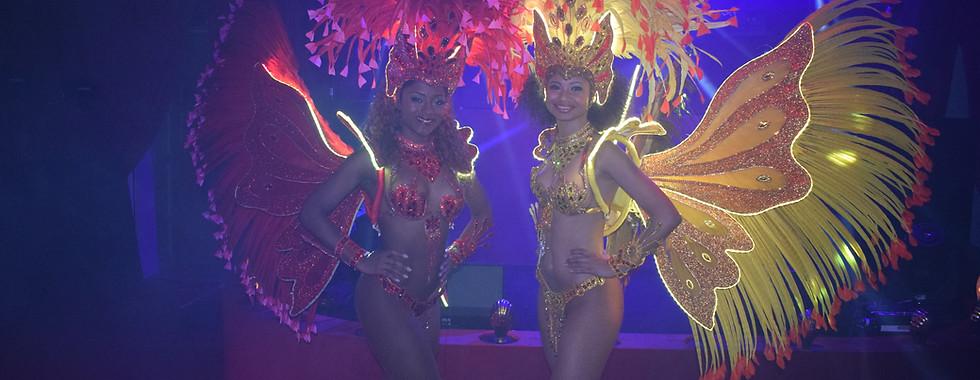 LED Butterfly Samba Dancers