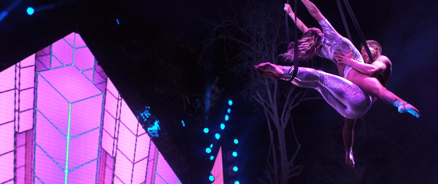 Hire best Aerialists for events UK