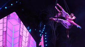Book Circus Acts Aerialists London