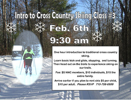Cross country Ski Intro #3.jpg