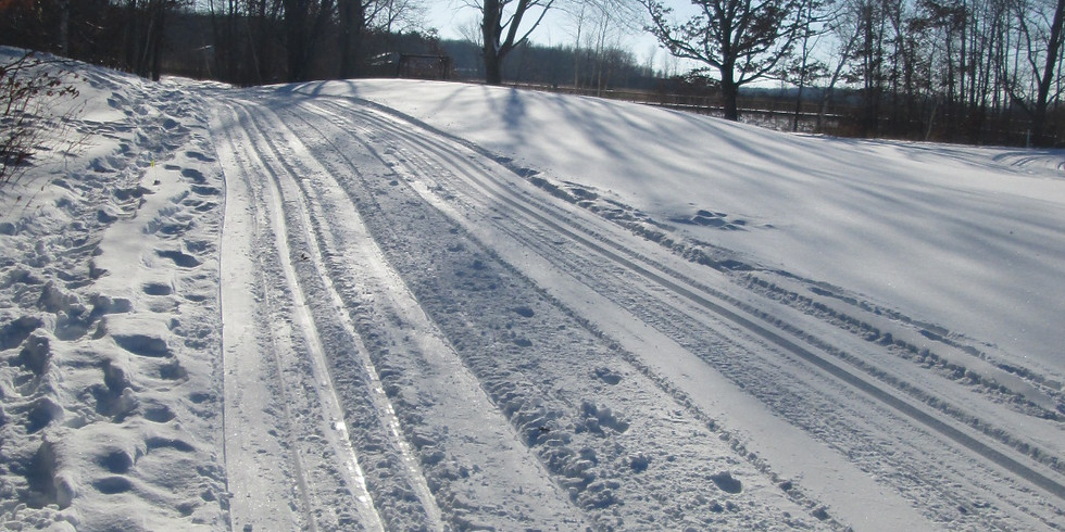 Intro to Cross-Country Skiing
