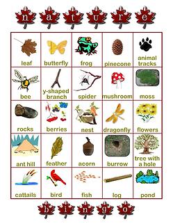 Nature Bingo 2.png