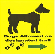 Dog trail -- winter.png