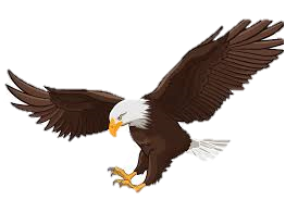 eagle clipart.png