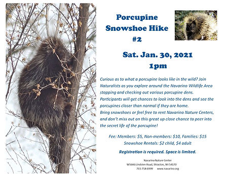 Porcupine Snowshoe Hike #2.jpg