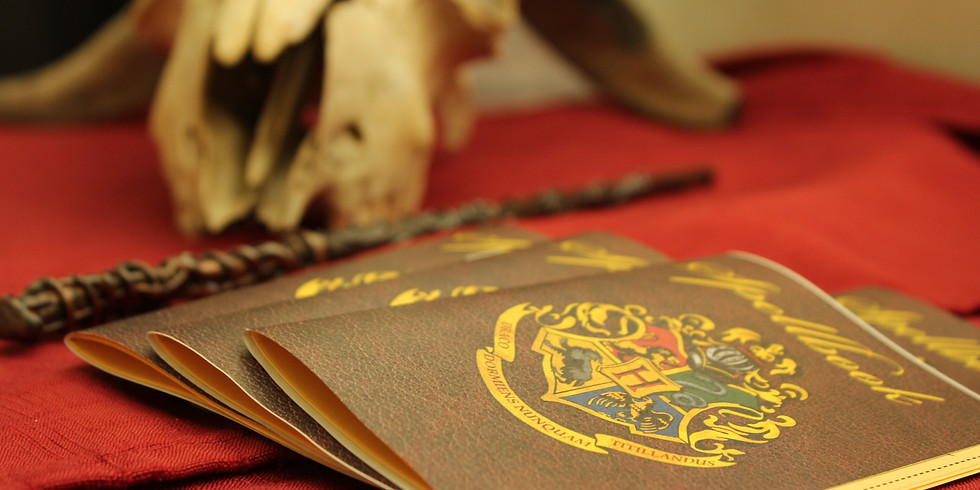 Harry Potter Day Camp 2020