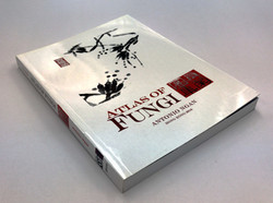 book 2 (r)