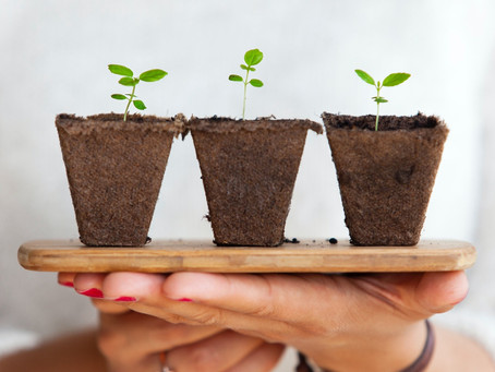 The Three Pillars Of Sustainability (De-Mystified)