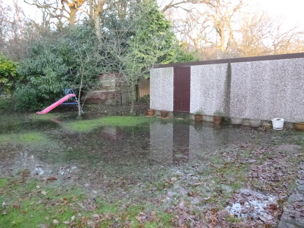 Waterlogged Garden.JPG