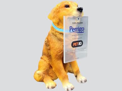 Resin Dog