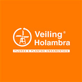 VEILING HOLAMBRA.jpg