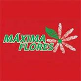 MAXIMA FLORES.jpg
