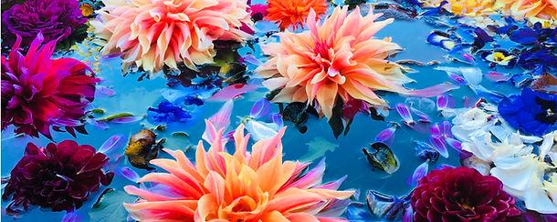 Flowers Blog Cris.jpg
