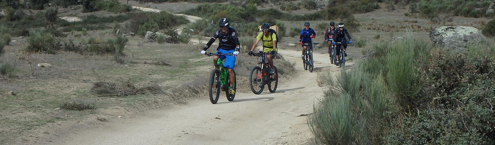 Bike topo 2