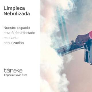 taneke tocados covid free (8).jpg