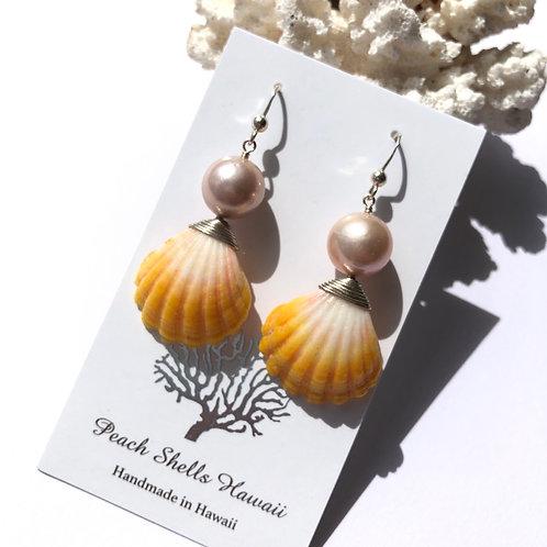 SS Sunrise Shell Edison Pearl Earrings (3)